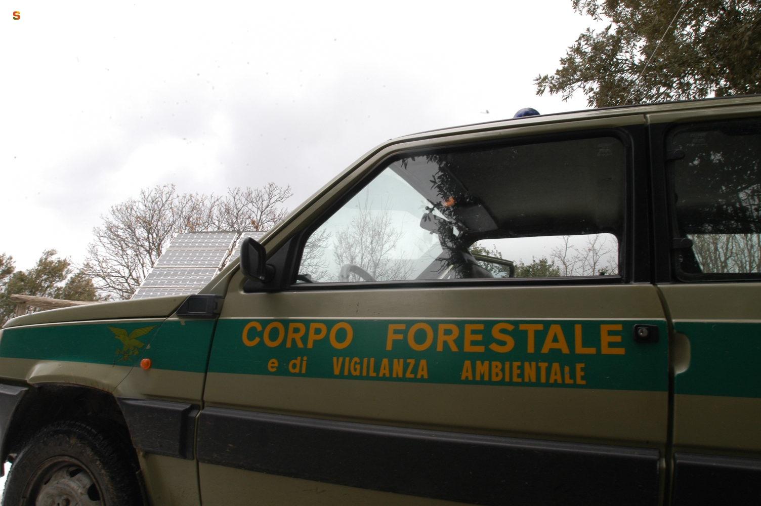 Cosa fa il Corpo Forestale di Vigilanza Ambientale? - Uno studio